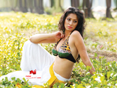 Raai Laxmi Wallpapers