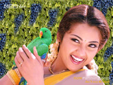 Meena wallpapers