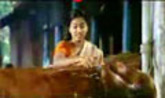Veruthe Oru Bharya Video