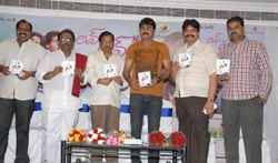 Love to Love movie Audio function