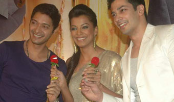 Will You Marry Me Music Launch