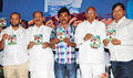 Narasimha Raju Movie Audio Release
