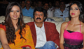 Srimannarayana Triple Platinum Function