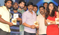 Amma Nana Ooru Velithe Audio Launch