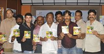 Half Boil Movie Audio Launch