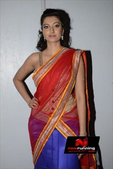 Picture 4 of Hamsa Nandini