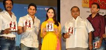 Mr.Pellikoduku Audio Function