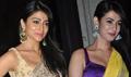 Shriya Saran, Sonal Chauhan And Other Snapped At Diwali Bash