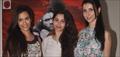 Desi Kattey Movie  Media Meet