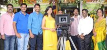Gopichand's New Film Opening