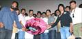 Jigarthanda Movie Audio Launch