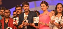 Loukyam Audio Release Photos