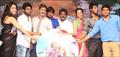Ra Ra Krishnayya Audio Release