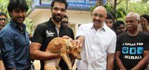 Actor Sathyaraj Sib Adoption Of Stray Dog That Was Saved In Porur Building Collapse