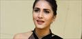 Vaani Kapoor in Black Saree