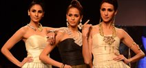 Lotus Sutra Show At IIJW 2015