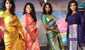 Celebs At Palam Silks Festivel Collections 2015 Fashion Show