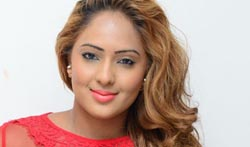 Nikesha Patel Latest Photoshoot - Pictures
