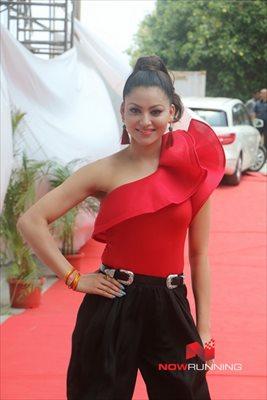 Picture 4 of Urvashi Rautela