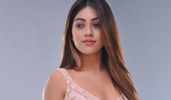 Anu Emmanuel Latest Photos - Pictures