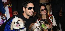 Sidharth Malhotra graces the 'Glam Dogs' event in Mumbai