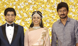 Kamala Theatre Owner Nagu Chidambaram's Son Wedding Reception - Pictures