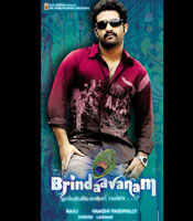 All about Brindaavanam