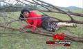 Anbulla Durogi Picture