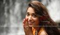 Priya Priyathama  Picture