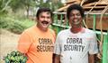 Cobra Picture