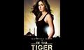 Ek Tha Tiger Picture