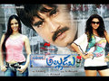 America Alludu Wallpaper