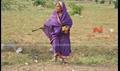 Ammavin Kaipesi Picture