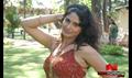 Asaivam Picture