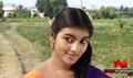 Kannukku Imayanal Picture