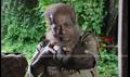 Nankam Pirai Picture