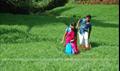 Ninaivugal Azhivathillai Picture