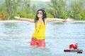 Veera Picture