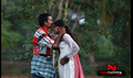 kokkarakulam Picture