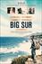Big Sur Picture