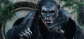 Dawn of the Planet of the Apes Video