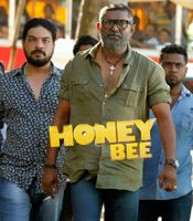All about Honey Bee