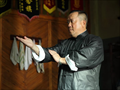 Ip Man Picture