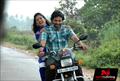 Navarangi Picture