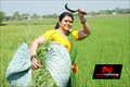 Pullukattu Muthamma Picture