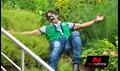 Paravai Picture