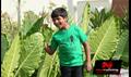 Saradhaga Ammailatho Picture