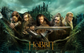 The Hobbit: The Desolation of Smaug Picture