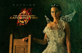 The Hunger Games Catching Fire Wallpaper