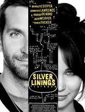 All about The Silver Linings Playbook